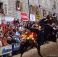 Pad s konja